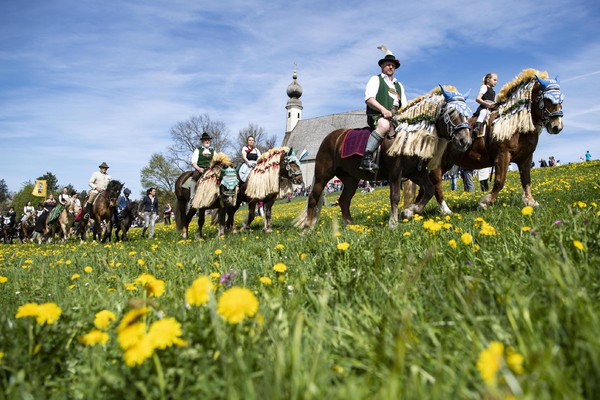 Traditional pilgrimage with horses in Traunstein